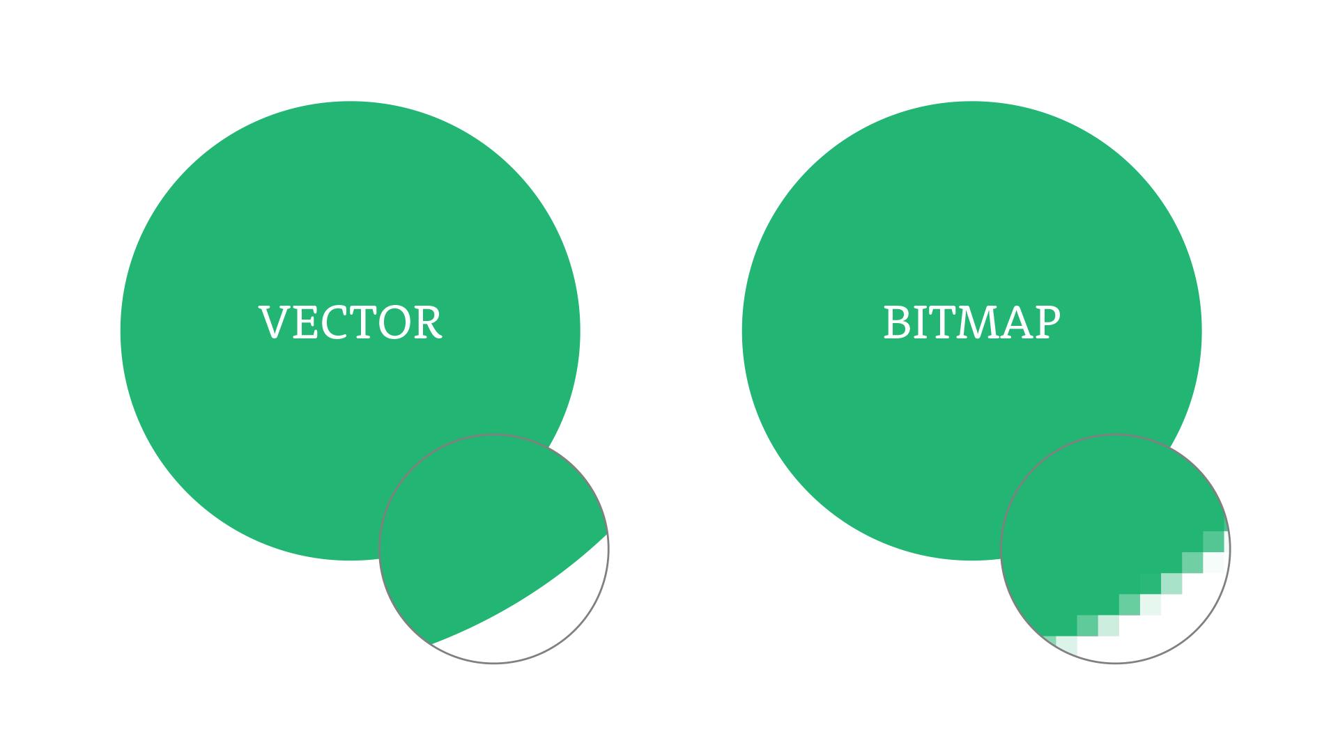 Vector vs Bitmap Image